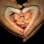 Parent hands holding childrens hands
