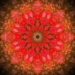 beautiful pink and red mandala lotus